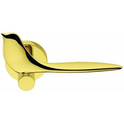 Дверная ручка Colombo TWITTY TK11R золото